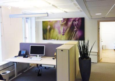 Kontor ljudnivå dämpa akustik tavla bordskärm absorbent